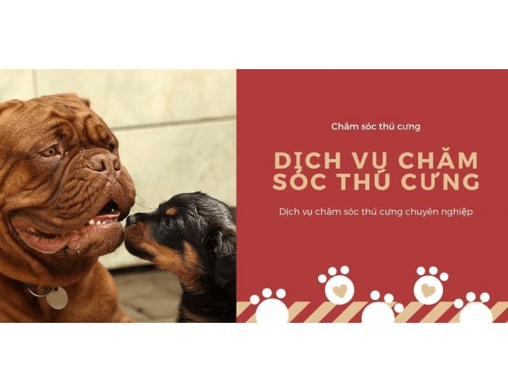 Thiết kế website thú cưng đẹp, bắt mắt,chuyên nghiệp